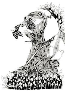 SadieIllustration300